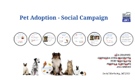 Pet Adoption - Social Campaign