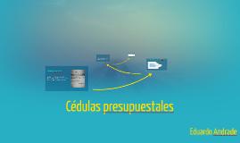 Copy of Cédulas presupuestales