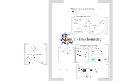 Unit 2: Biochemistry