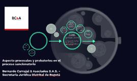 Aspecto procesales y probatorios en el proceso sancionatorio