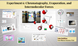 Copy of Experiment 6: Chromatography, Evaporation, and Intermolecula