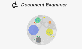 Document Examiner