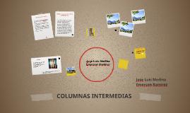COLUMNAS INTERMEDIAS