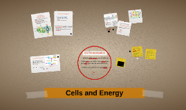 Copy of Chapter 4: Cells and Energy