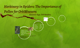 Herbivory in Spiders: The Importance of Pollen for OrbWeaver