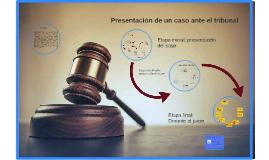 Presentación de un caso ante el tribunal