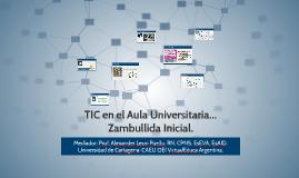 TIC en el Aula Universitaria... Zambullida Inicial.