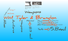 Tyler and Brandon WWI project