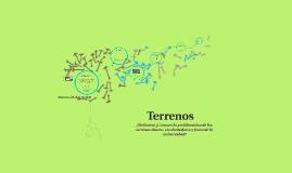 Copy of Terrenos