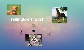 Tellington TTouch