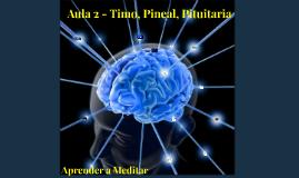 Aula 2 - Ativação Glândula Pineal