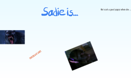 Sadie is a dog