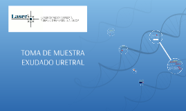 Copy of TOMA DE MUESTRA  EXUDADO URETRAL