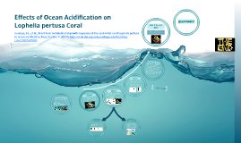 Effects of Ocean Acidification on Lophelia pertusa Coral