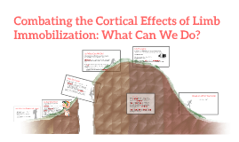 Combating the Cortical Effects of Limb Immobilization: What