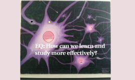 How can we learn and study more effectively?