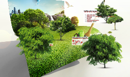 Plantorama - Erhvervscase