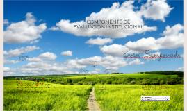 COMPONENTE DE EVALUACIÓN INSTITUCIONAL