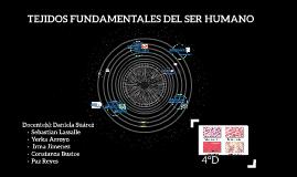 TEJIDOS FUNDAMENTALES DEL SER HUMANO