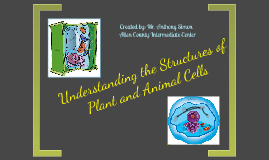 Structures of Plant and Animal Cells