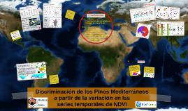 Discriminación de los Pinos Mediterráneos