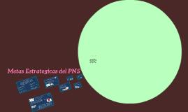 mestas estrategicas del PNS
