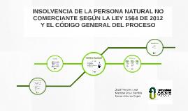 Regimen de Insolvencia de persona natural no comerciante