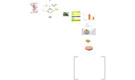 Diseño, implementación y evaluación de un programa de optimi