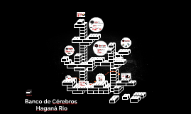 Banco de Cérebros - Haganá Rio