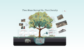 Time Since Burned vs Plant Density