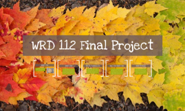 WRD 112 Final Project