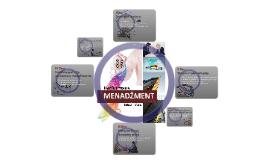 Appendix II - Reporting BSC results/performance masures