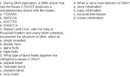 DNA Quiz (Unfinished)