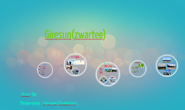 Copy of giresun(zwartezee)