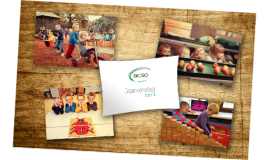 SKOSO jaarverslag 2013