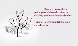 Conceptos & Principios Basicos De La Organizacion