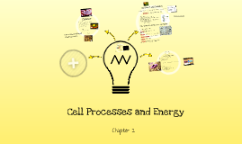 2--Cell Processes and Energy