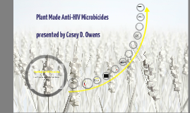 Plant made Anti-HIV Microbides