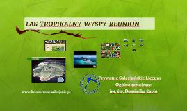 Copy of LAS  TROPIKLANY  WYSPY  REUNION