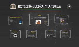 PROTECCION JURIDICA  Y LA TUTELA