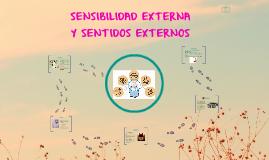 Copy of SENSIBILIDAD EXTERNA Y SENTIDOS EXTERNOS