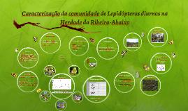 Copy of Copy of Caracterização da comunidade de Lepidópteros diurnos na Herd