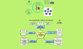 Desarrollo Curricular y didáctico con TIC