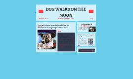 DOG WALKS ON THE MOON