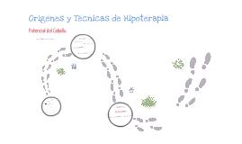 Copy of ORIGENES Y TECNICAS DE LA HIPOTERAPIA