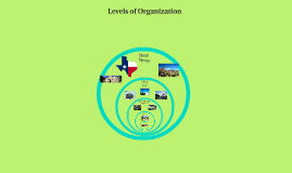 Intro to Levels of Organization