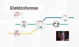 Elektroforese