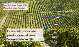 Copy of Fase de procesos de producción del vino