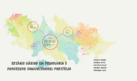 Estágio Básico em Psicologia e Processos Comunitários: Portf