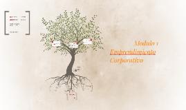 Modulo 1-  Emprendimiento Corporativo